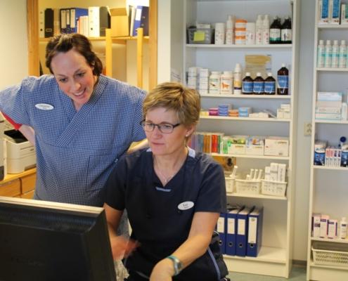 E-Vet AS, Veterinær i Elverum